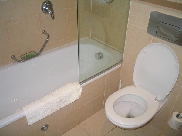 Unclog-a-Toilet.jpg