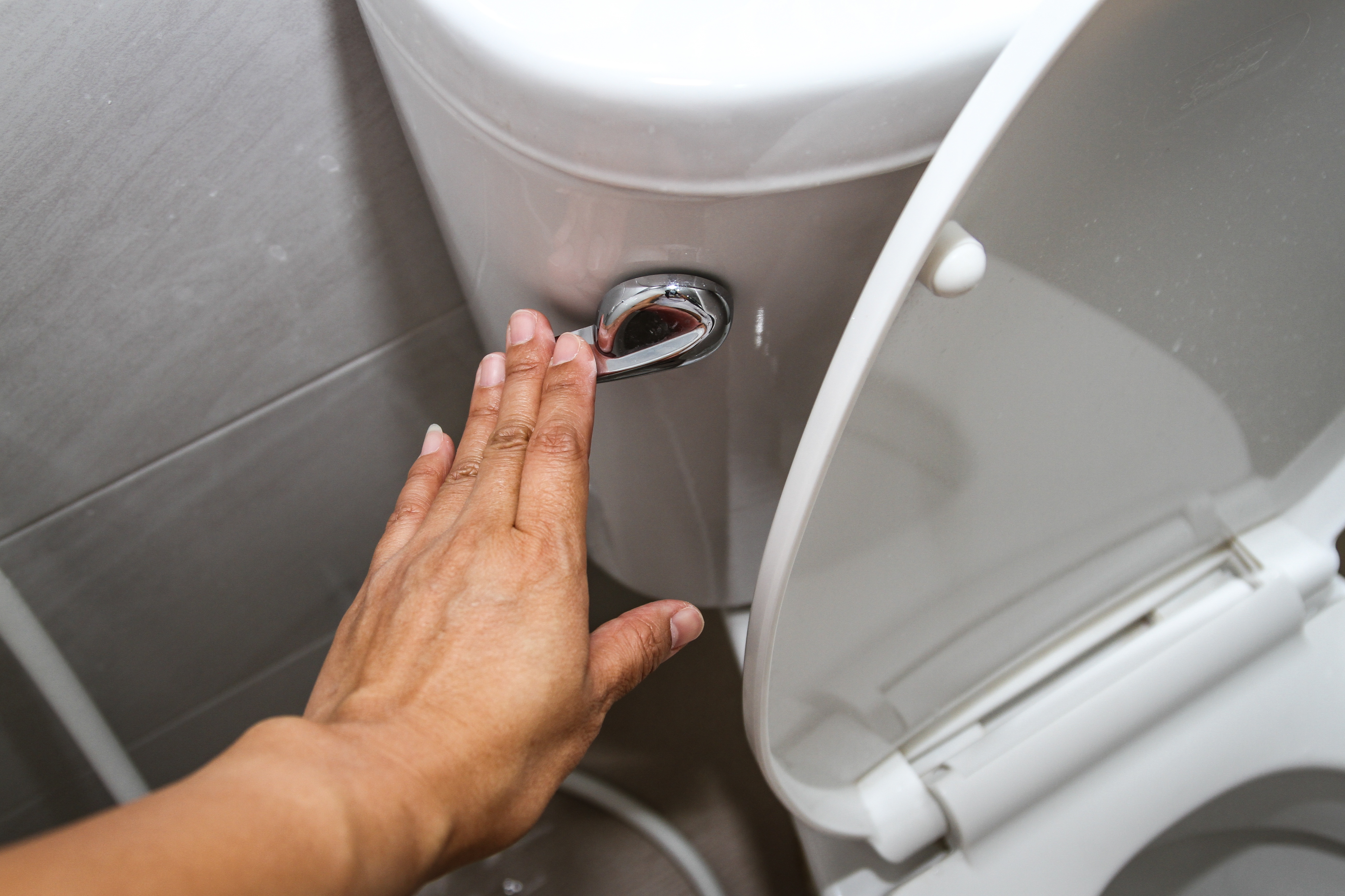 Flush your toilet without a water supply